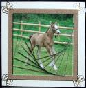 Biscuit the Foal
