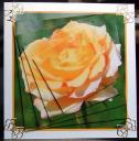 Yellow Rose Twisted Pyramid