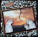 cup384075_49 - card02 - magic in the jungle cheetah in the sunset