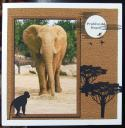 cup388886_33 - card01 - African Elephant