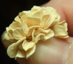 Paper Flower Making 03 13