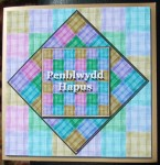 cup306183_99 - card02 - Wide Plaid Paper Pack - CU4CU