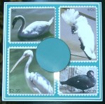 cup366687_1566 - card02 - Bird stamps 1a