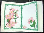 cup417619_33 - card01C - Cherry Blossom Insert