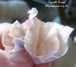 PaperFlowerMaking04 12