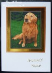 cup423005_15 - card02C - Golden Retriever Scene Pyramid