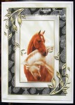 cup424172_415 - card03C - BEAUTIFUL HORSES HEADS ENTWINED IN SILVER_BLACK FRAME A4