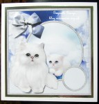 cup426168_566 - card01C - Cute And Fluffy