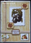 cup373931_1749 - card02C - Fruitfull Elements