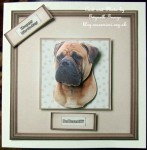 cup304816_15 - card02C - Bullmastiff Portrait 3D Decoupage