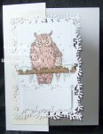 Chilly_Owls - card01 03