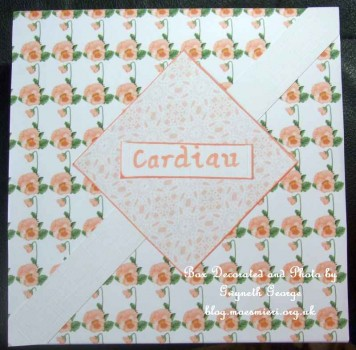 cup262893_905 - card02 - LACE BACKING PAPER SHEET #L50M