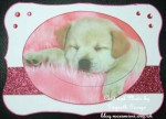 cup449609_1886 - card01 - Cute Labrador Puppy Pink Offset Oval Pyramid Card Front