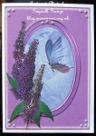 cup456117_1914 - card01 - Butterflies & Buddleia Mini Kit
