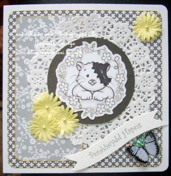cup474827_1989 - card02 - 6 cute kittens and floral borders