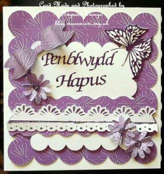 cup62565_359 - card01 -  'Daisy Embossed' Backing Paper