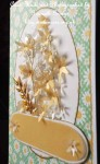 cup524673_539 - card03 -  Green daisy insert