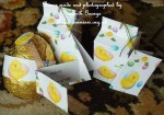 cup534466_1051 - card06 - Easter Chickens with Daisies and Eggs Backing Paper