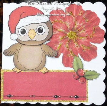 cup341887_1749 - card04 - Yoo Hoo Christmas A4 Card Decopage
