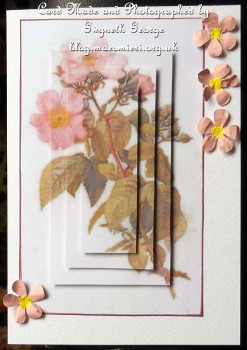 cup490694_1749 - card02 - Pink Wild Rose Pyramage Topper