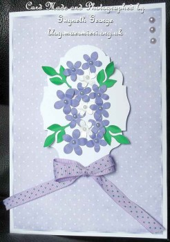 cup556186_846 - card01 - Purple And White Spotty Paper With Border